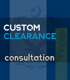 car custom clearance consultation